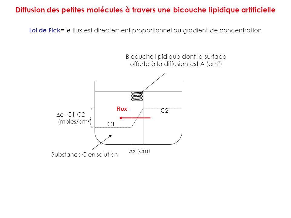 Bicouche lipidique dont la surface offerte à la diffusion est A (cm2)