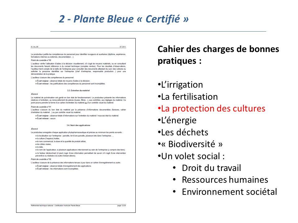 2 - Plante Bleue « Certifié »