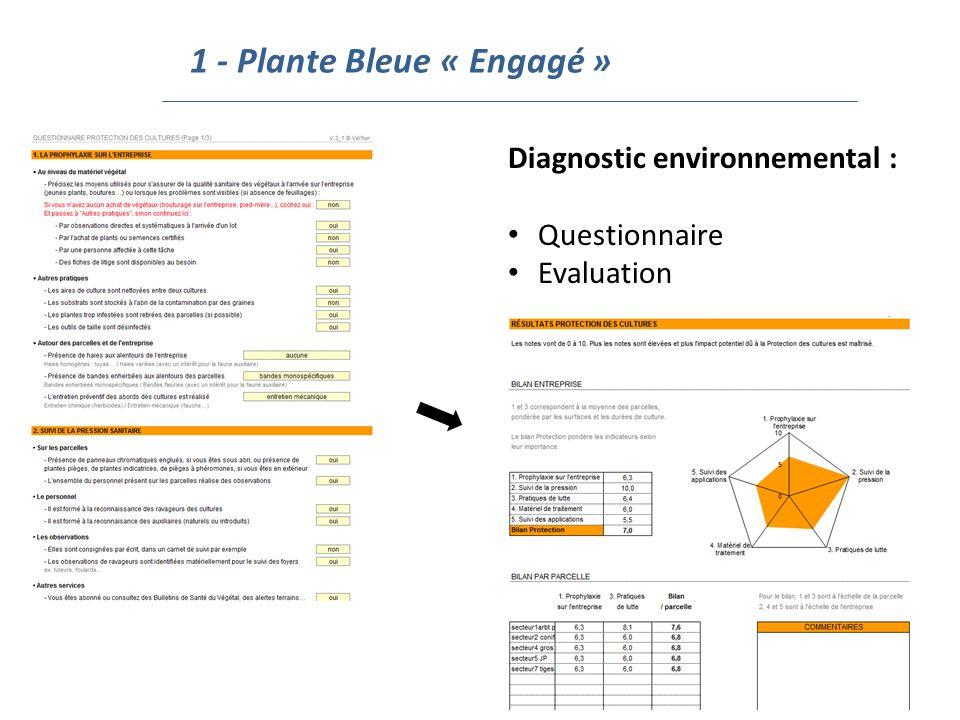 1 - Plante Bleue « Engagé »