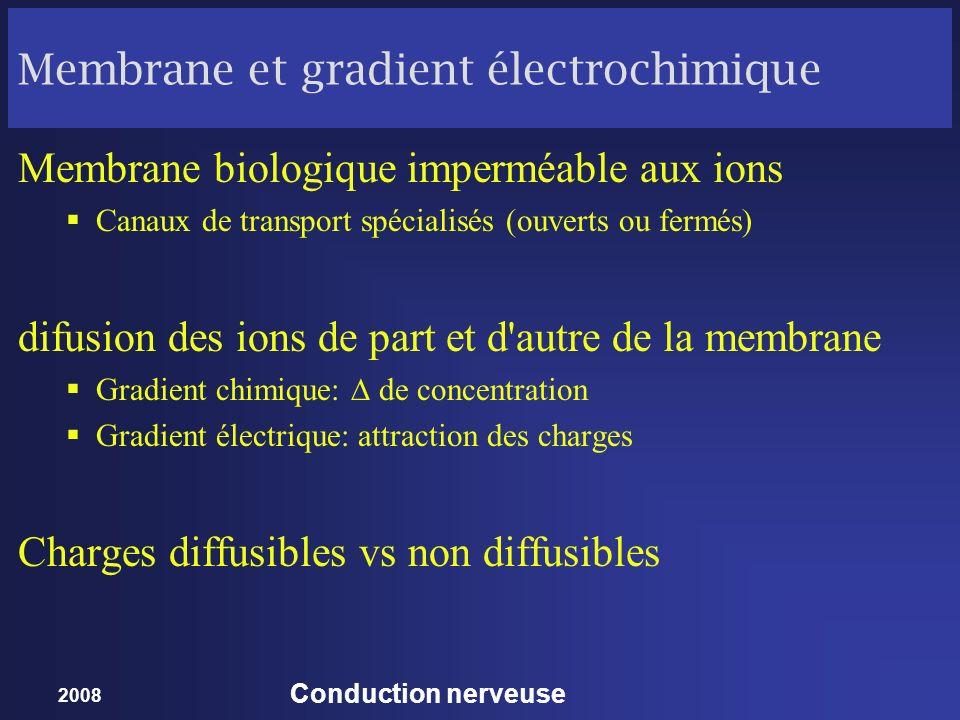 Membrane et gradient électrochimique