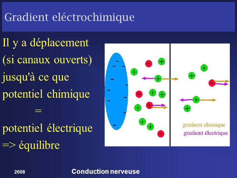 Gradient eléctrochimique