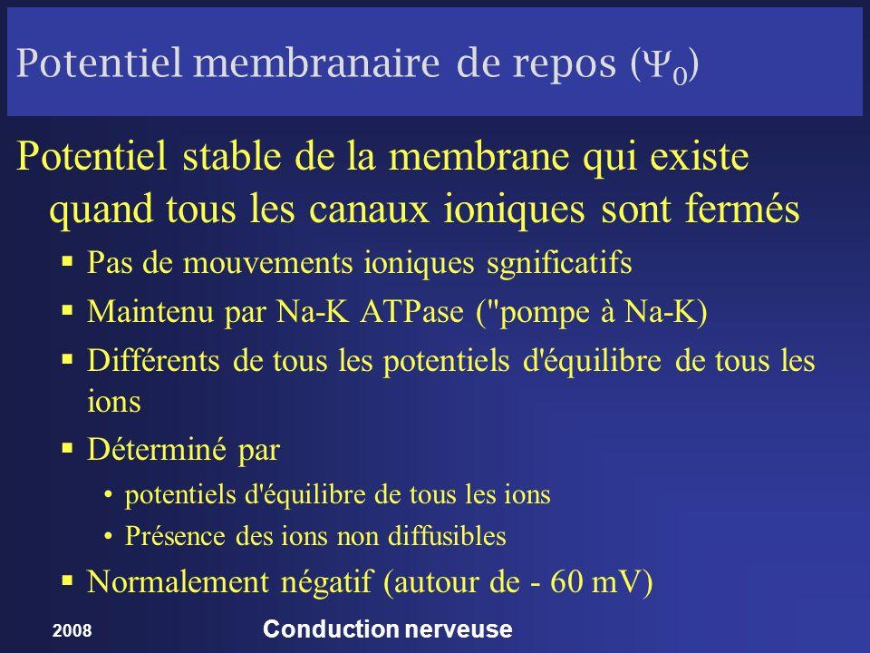 Potentiel membranaire de repos (Y0)