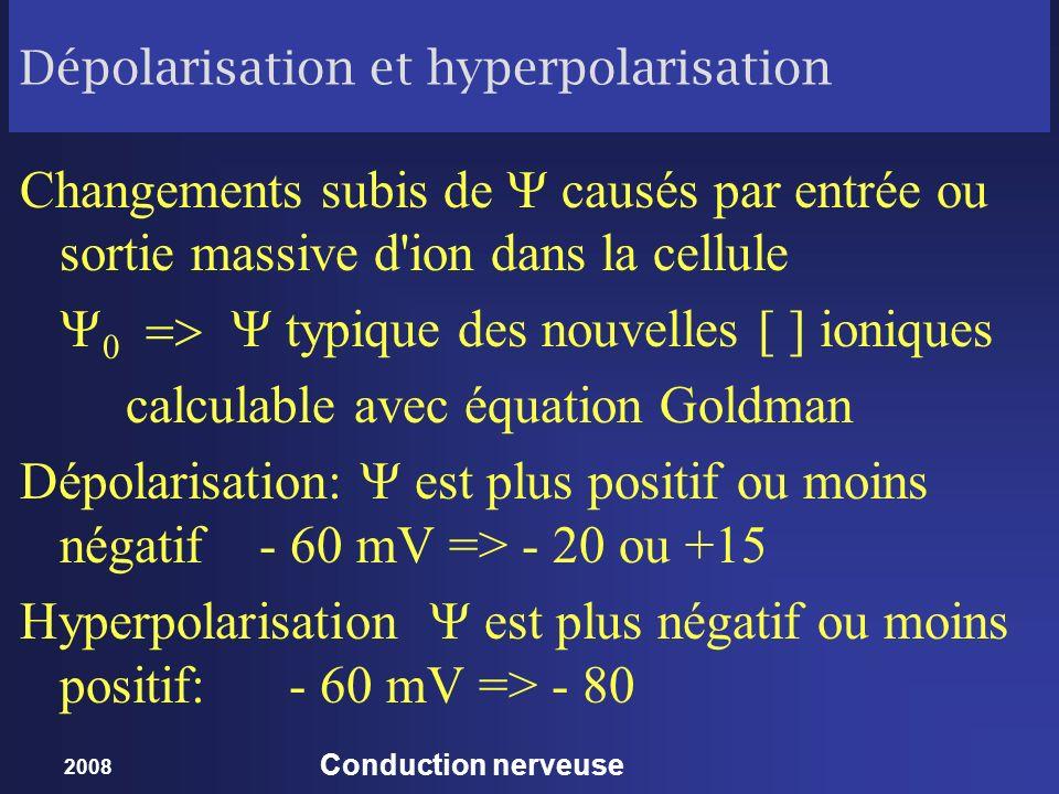 Dépolarisation et hyperpolarisation