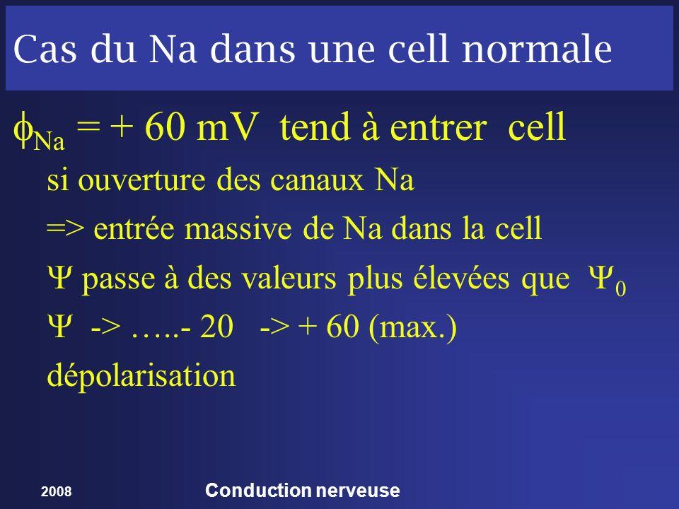 Cas du Na dans une cell normale