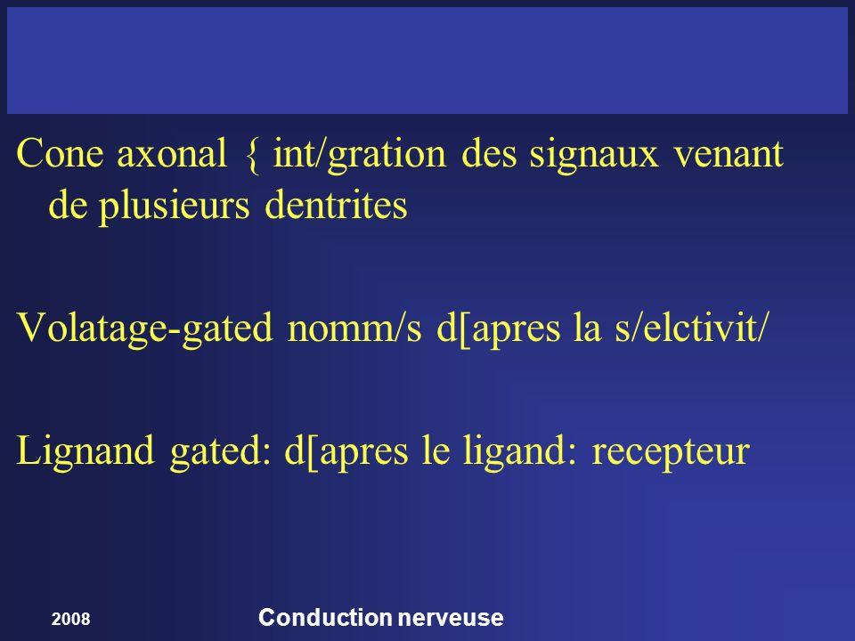 Cone axonal { int/gration des signaux venant de plusieurs dentrites