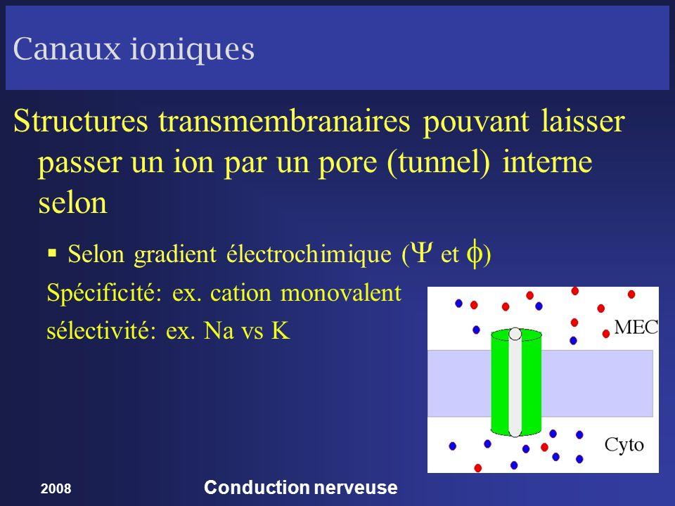 Canaux ioniques Structures transmembranaires pouvant laisser passer un ion par un pore (tunnel) interne selon.