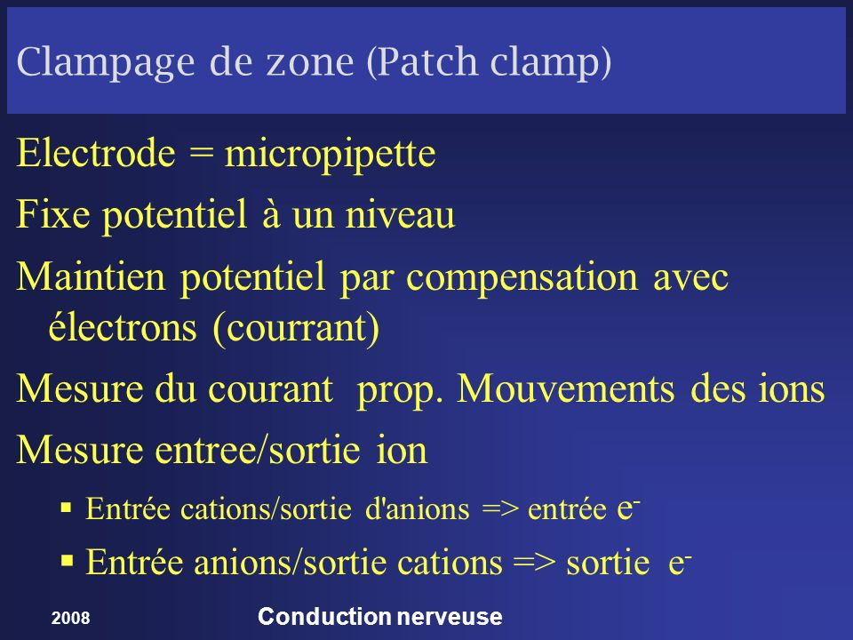 Clampage de zone (Patch clamp)