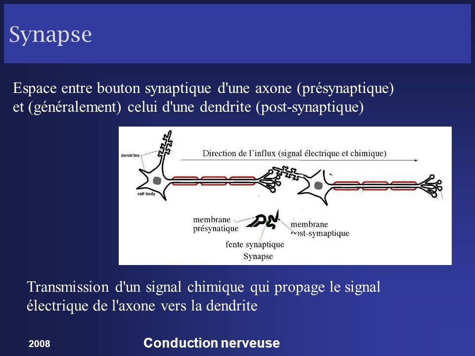 Synapse Espace entre bouton synaptique d une axone (présynaptique) et (généralement) celui d une dendrite (post-synaptique)