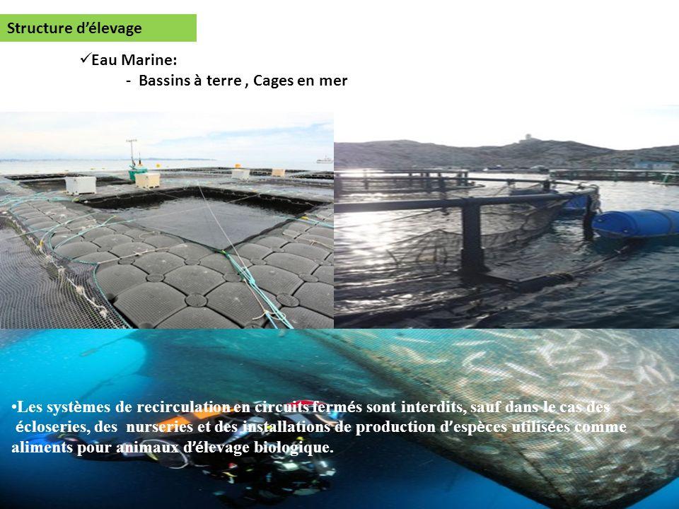 Structure d'élevage Eau Marine: - Bassins à terre , Cages en mer.