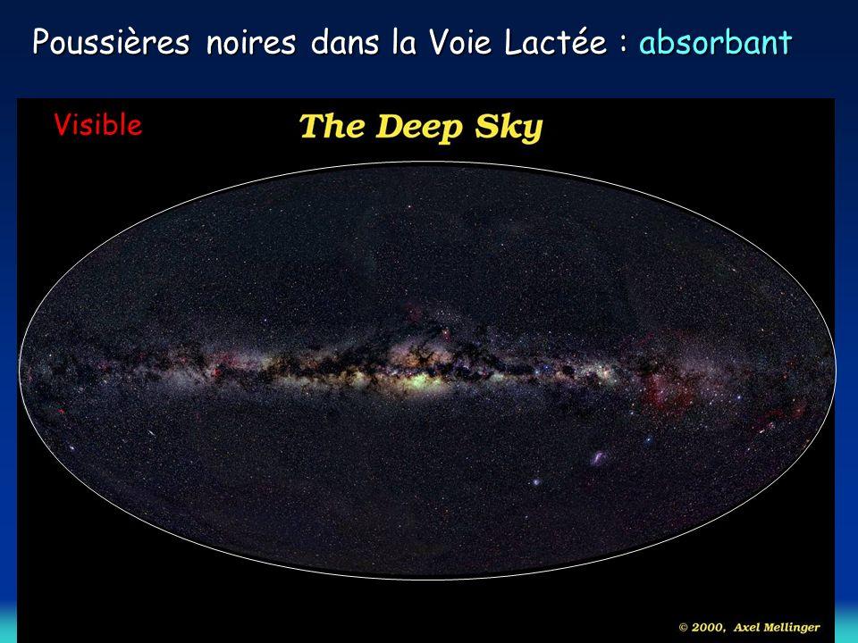 Poussières noires dans la Voie Lactée : absorbant