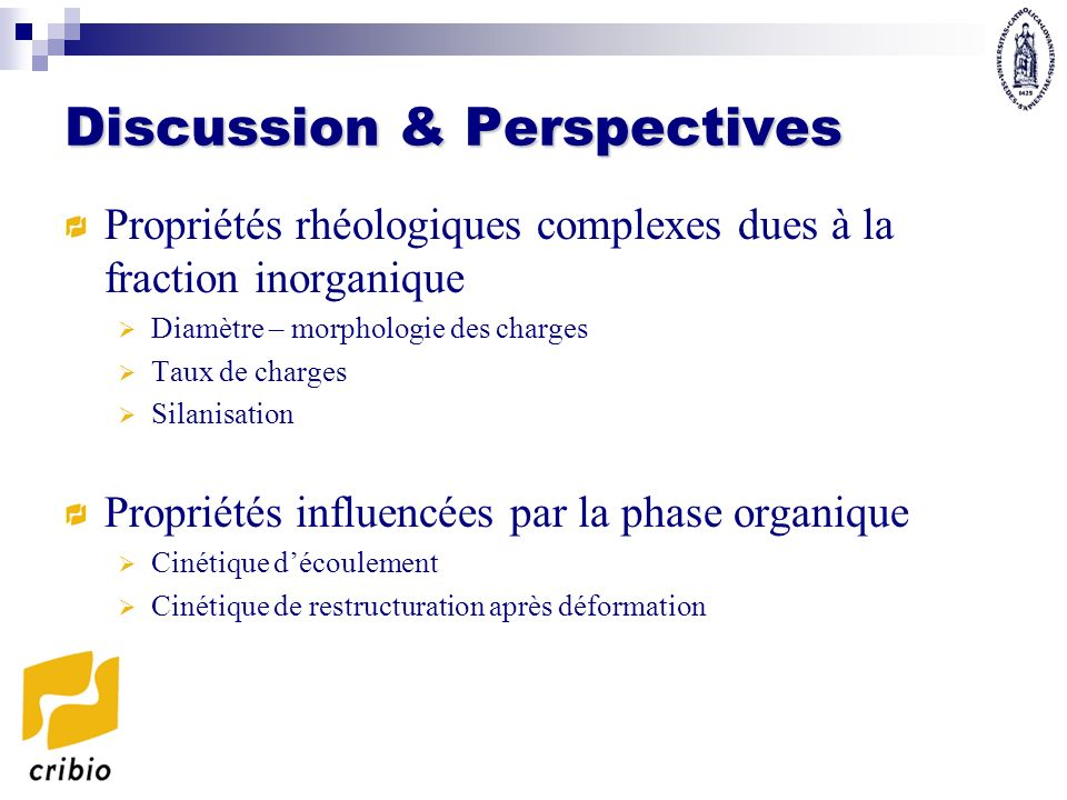 Discussion & Perspectives