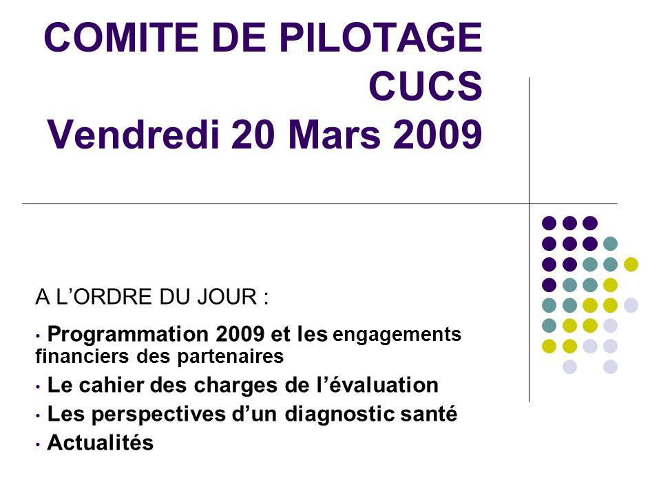 COMITE DE PILOTAGE CUCS Vendredi 20 Mars 2009