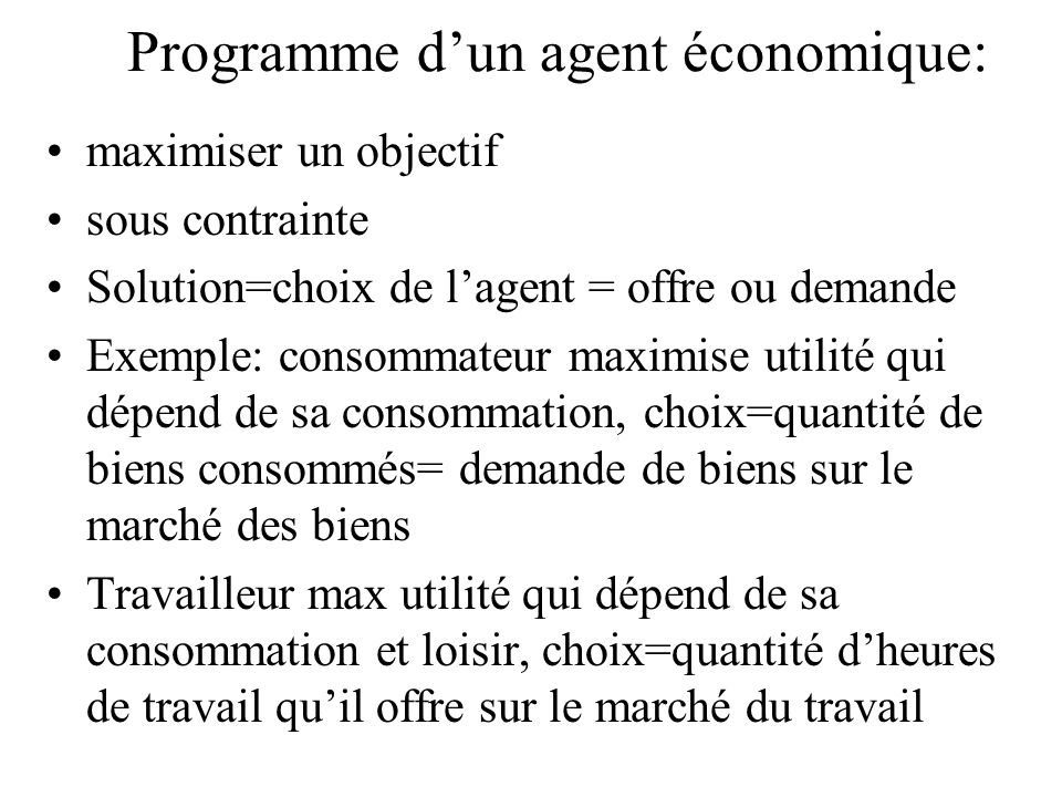 Programme d'un agent économique: