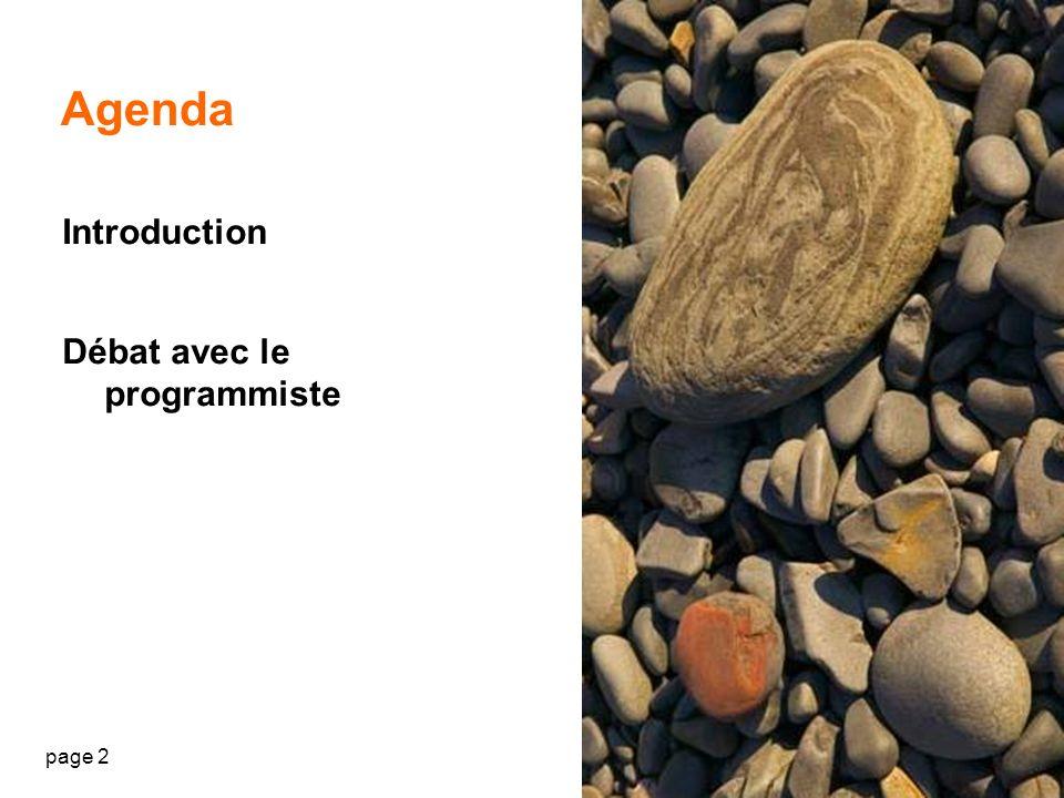 Agenda Introduction Débat avec le programmiste