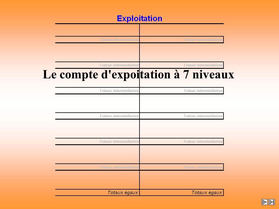 Le compte d expoitation à 7 niveaux