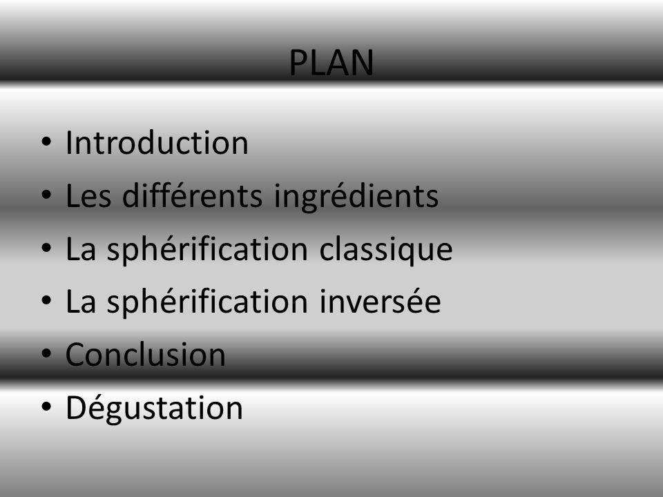 PLAN Introduction Les différents ingrédients