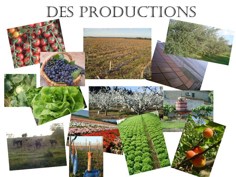 Des productions