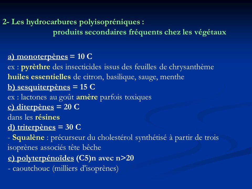 2- Les hydrocarbures polyisopréniques :