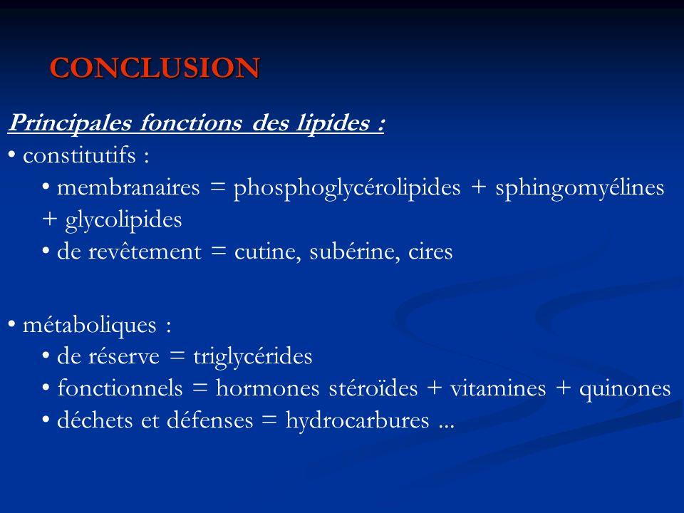 CONCLUSION Principales fonctions des lipides : constitutifs :