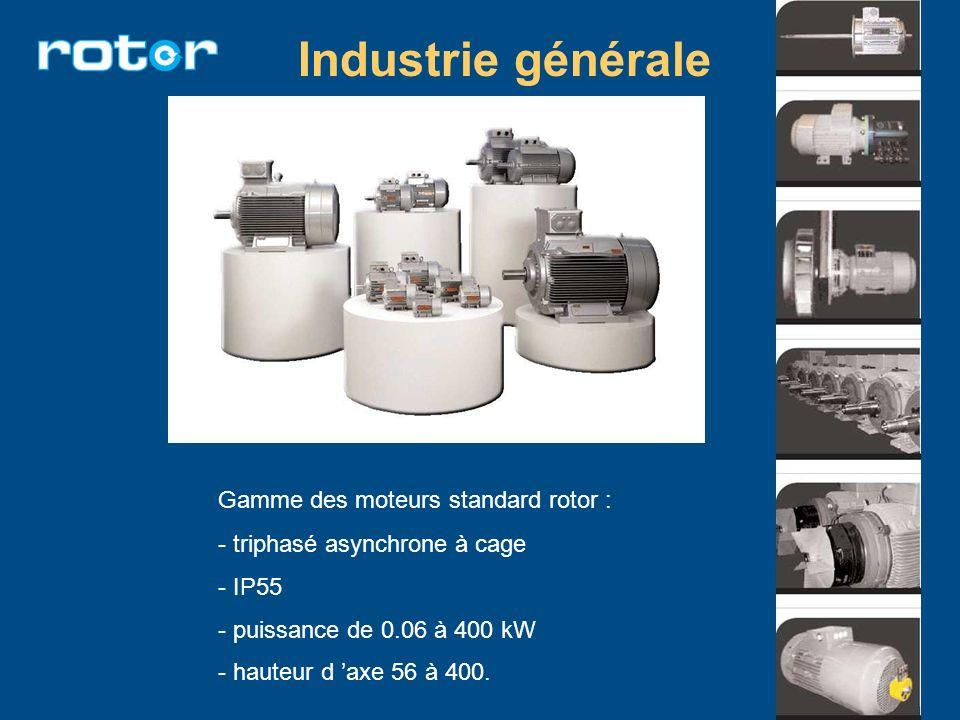 Industrie générale Gamme des moteurs standard rotor :