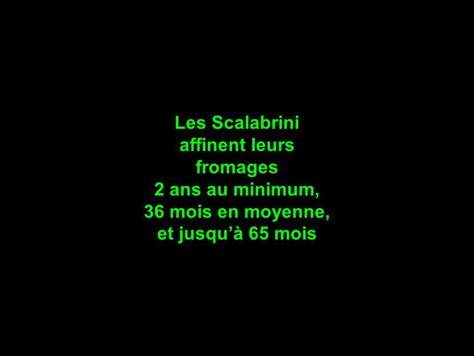 Les Scalabrini affinent leurs fromages 2 ans au minimum, 36 mois en moyenne, et jusqu'à 65 mois