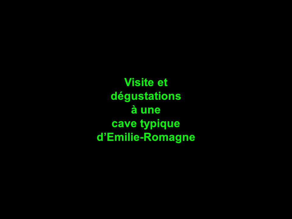 Visite et dégustations à une cave typique d'Emilie-Romagne