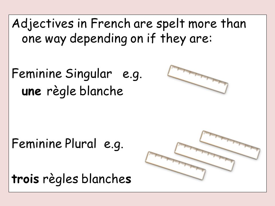 Adjectives in French are spelt more than one way depending on if they are: