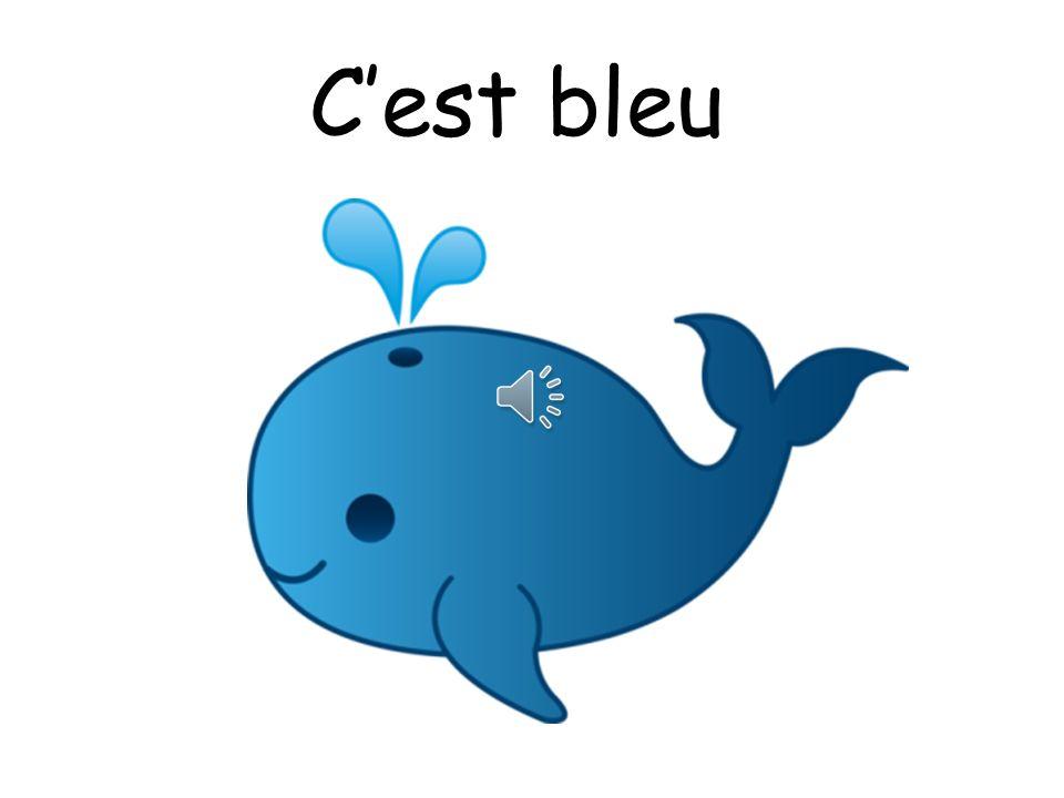 C'est bleu