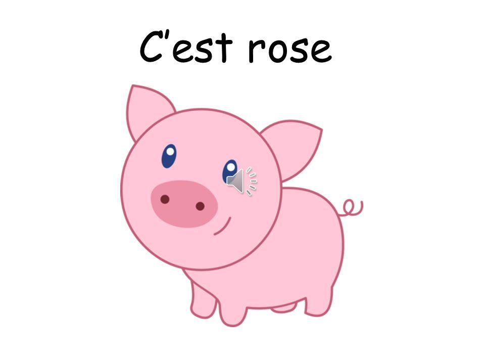 C'est rose