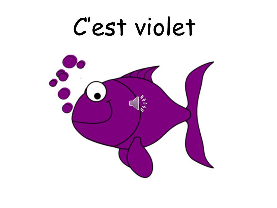 C'est violet