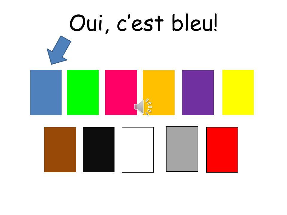 Oui, c'est bleu! Choississez means choose