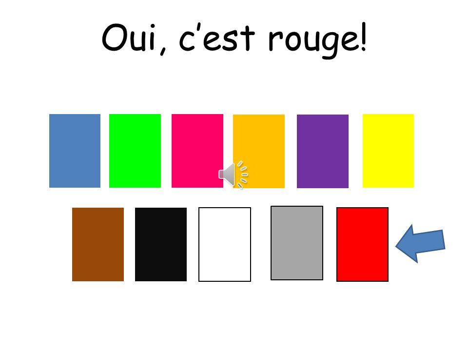 Oui, c'est rouge! Choississez means choose