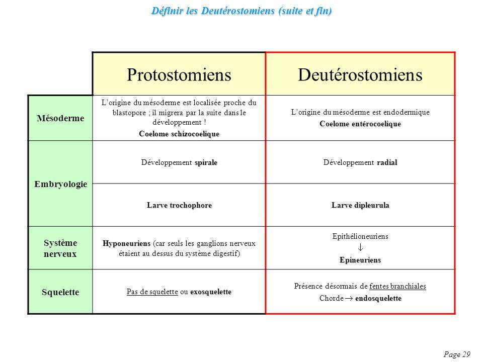 Définir les Deutérostomiens (suite et fin)