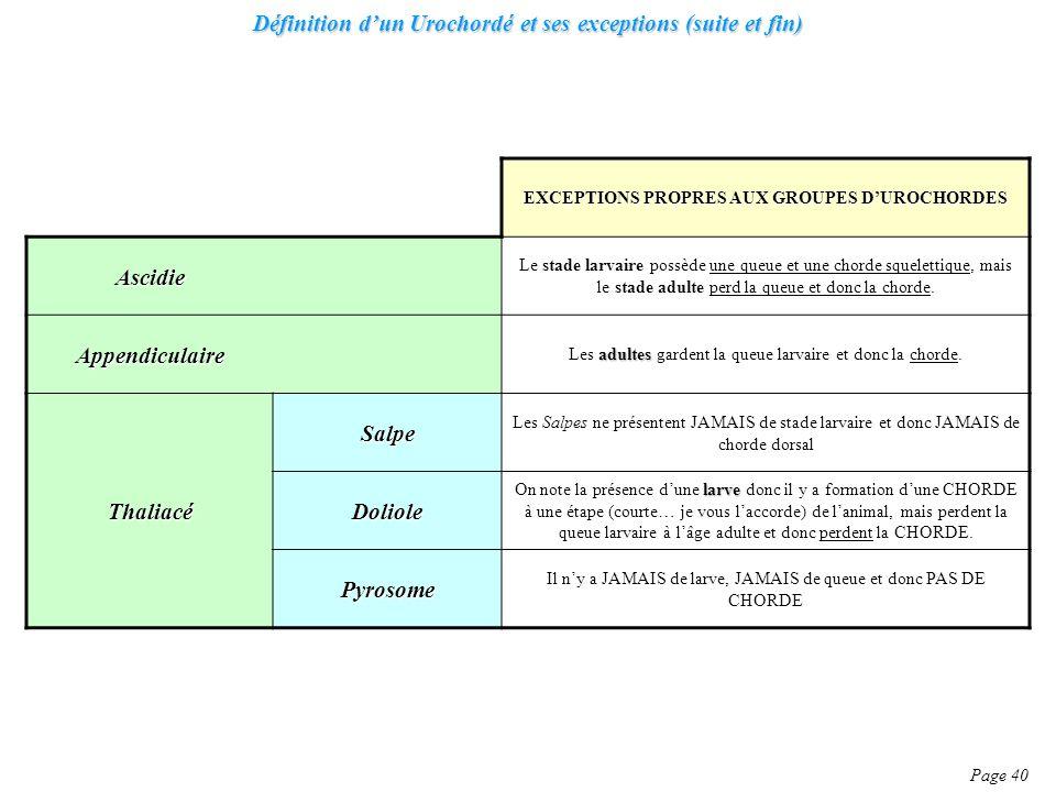 Définition d'un Urochordé et ses exceptions (suite et fin)