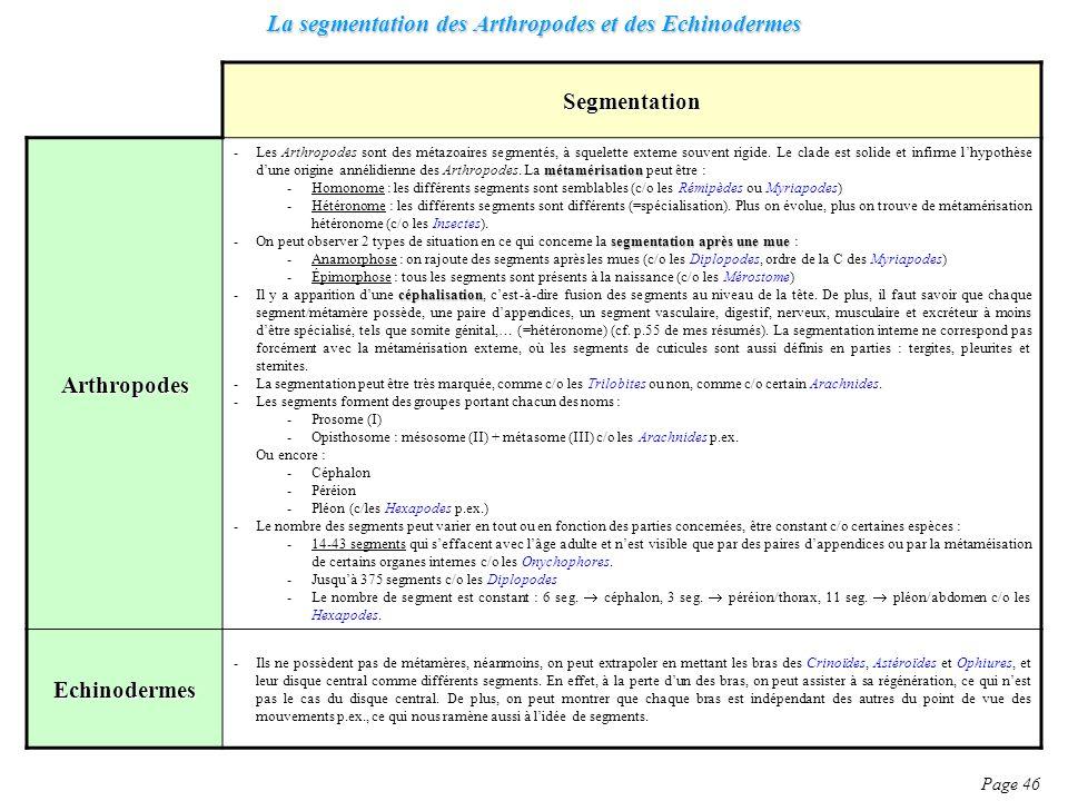 La segmentation des Arthropodes et des Echinodermes