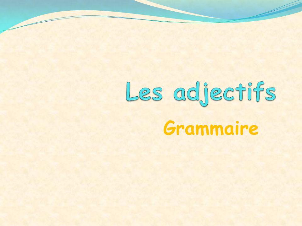 Les adjectifs Grammaire