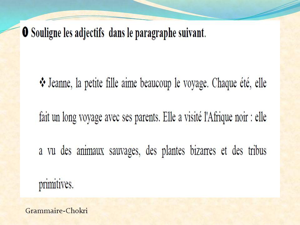 Grammaire-Chokri