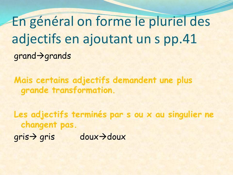 En général on forme le pluriel des adjectifs en ajoutant un s pp.41
