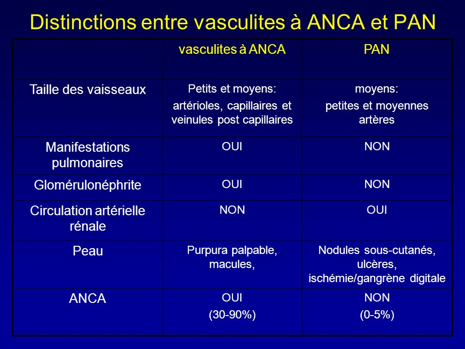 Distinctions entre vasculites à ANCA et PAN