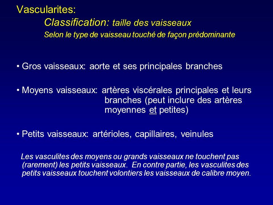 Vascularites:. Classification: taille des vaisseaux