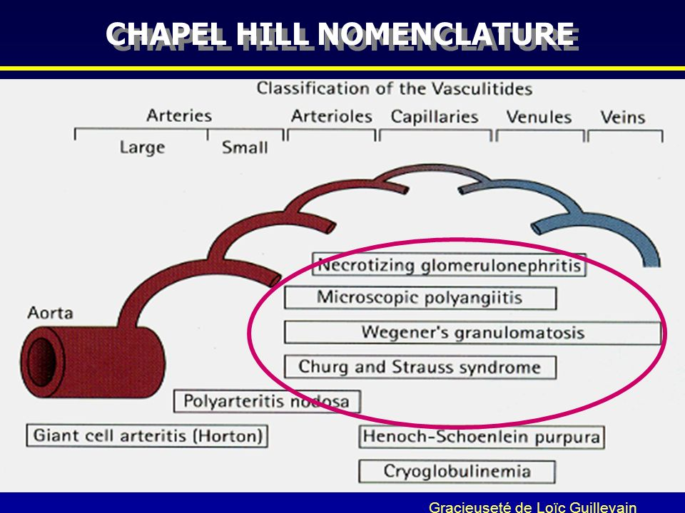 CHAPEL HILL NOMENCLATURE
