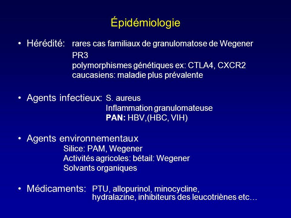 Épidémiologie Hérédité: rares cas familiaux de granulomatose de Wegener. PR3. polymorphismes génétiques ex: CTLA4, CXCR2.