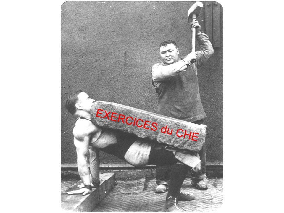 EXERCICES du CHE