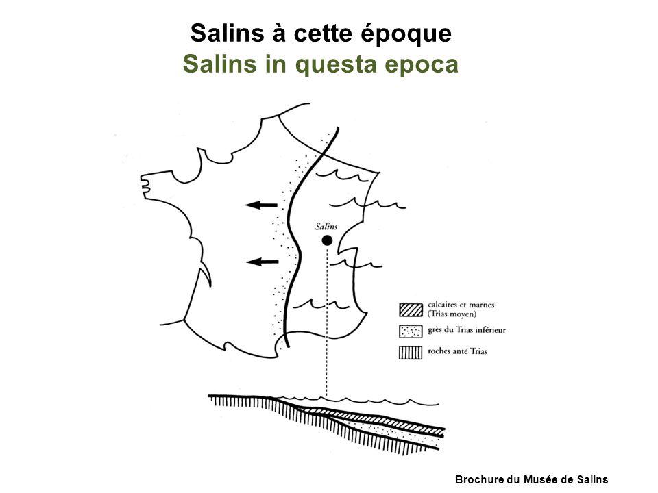 Brochure du Musée de Salins