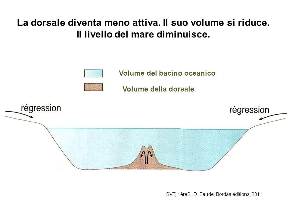 Volume del bacino oceanico