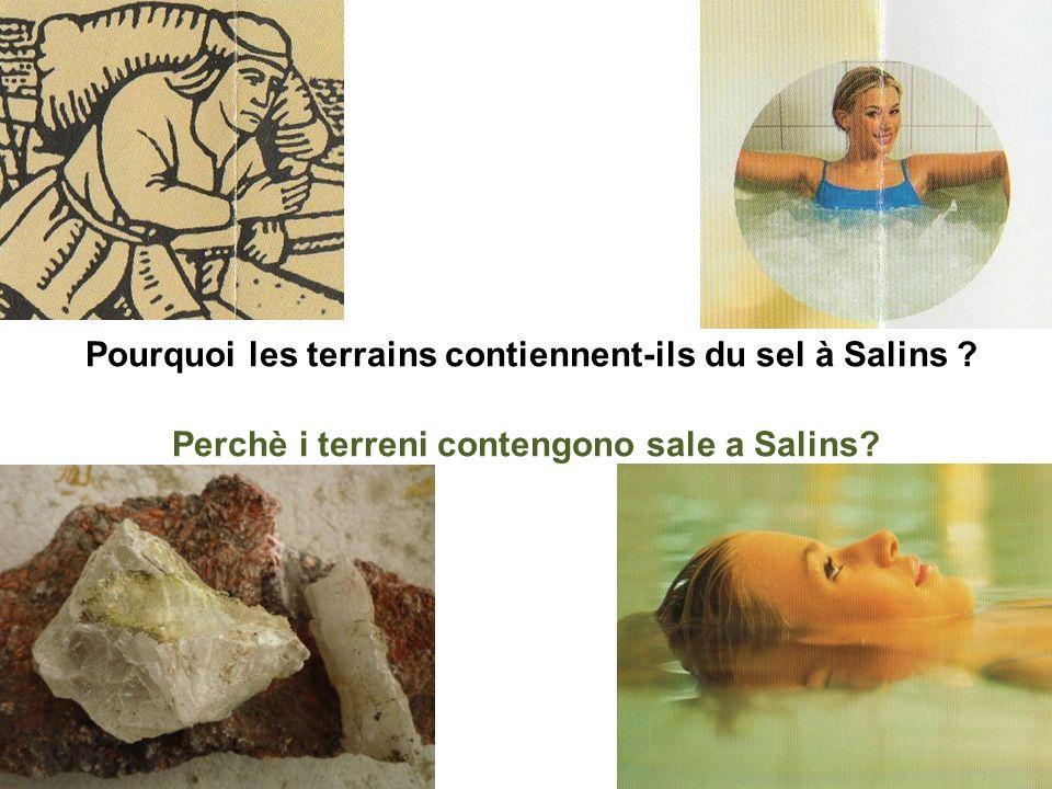Pourquoi les terrains contiennent-ils du sel à Salins