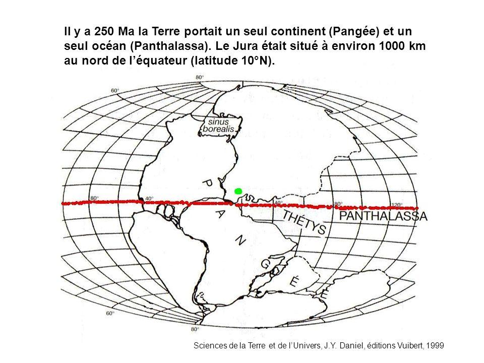 Il y a 250 Ma la Terre portait un seul continent (Pangée) et un seul océan (Panthalassa). Le Jura était situé à environ 1000 km au nord de l'équateur (latitude 10°N).