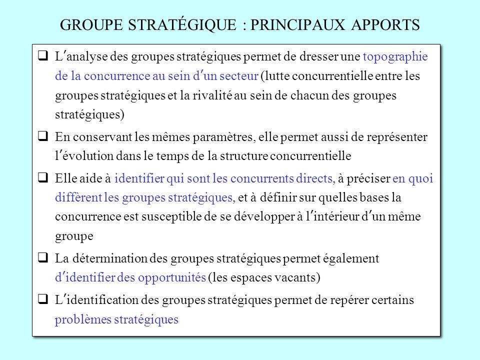 GROUPE STRATÉGIQUE : PRINCIPAUX APPORTS