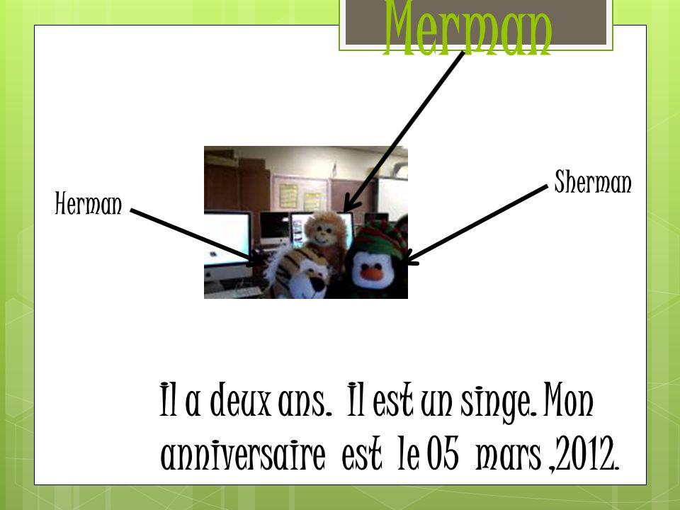 Merman Sherman Herman Il a deux ans. Il est un singe. Mon anniversaire est le 05 mars ,2012.