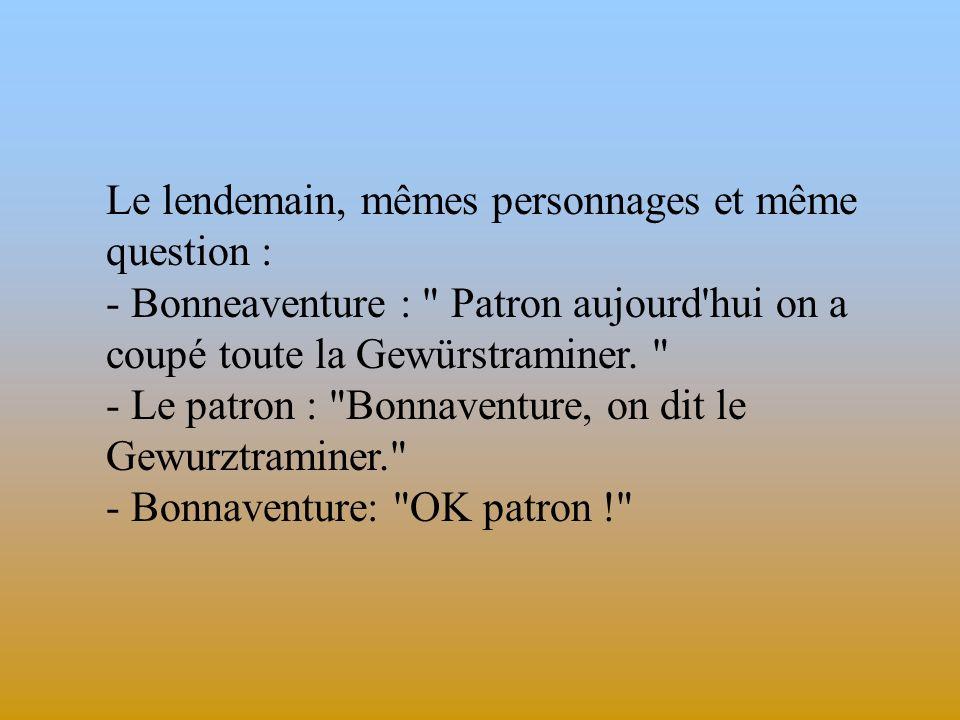 Le lendemain, mêmes personnages et même question : - Bonneaventure : Patron aujourd hui on a coupé toute la Gewürstraminer.